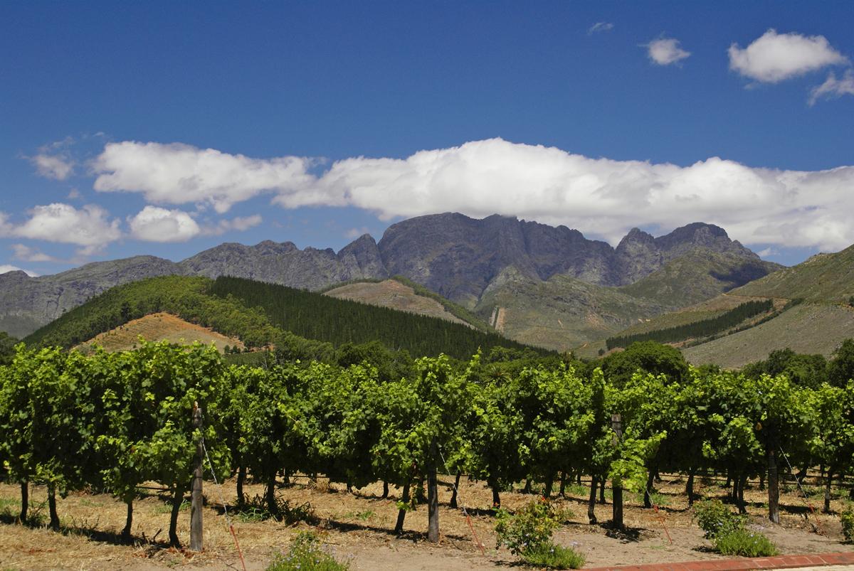 Winelands - Western Cape